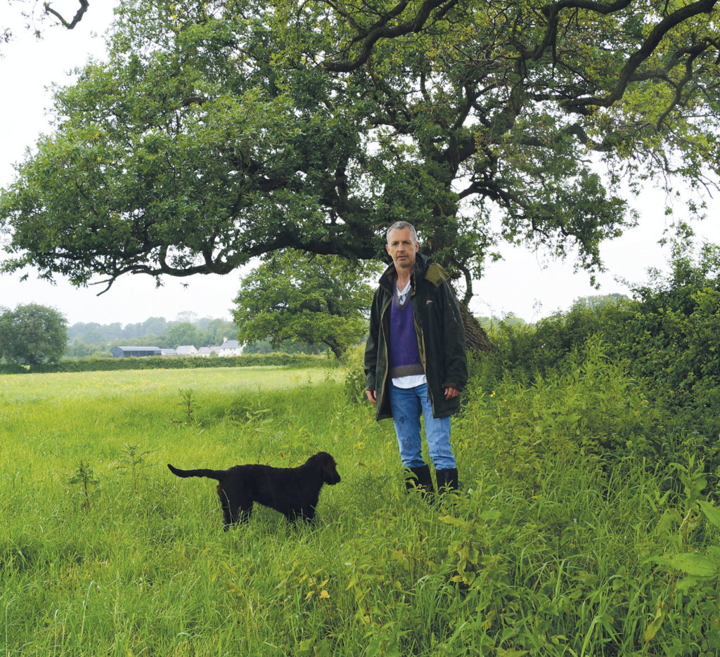 Greening Welsh Grassland