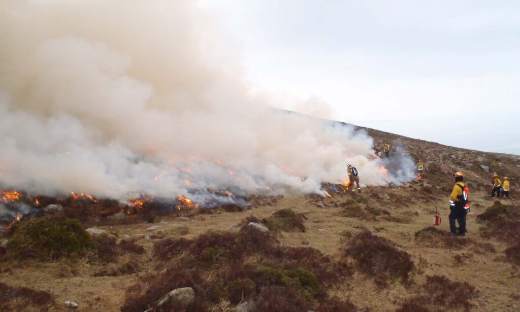 NI Fire and Rescue Service and Mourne Heritage Trust personnel carrying out a prescribed burn of a wildfire control plot in the Eastern Mourne Mountains.
