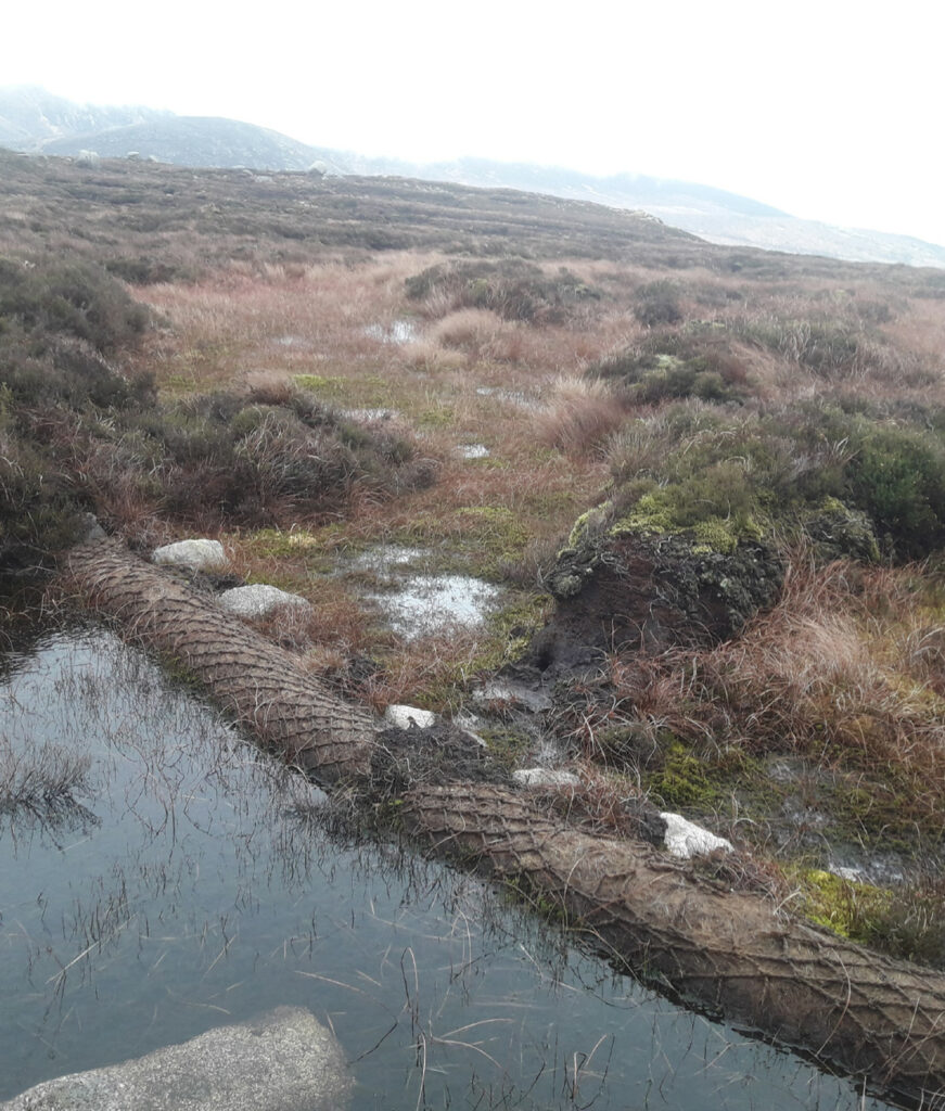 Coir rolls on eroded peatland hold back water and sediment.